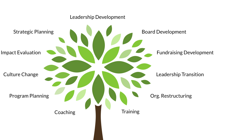 Capacity Building Tree UPDATED v2